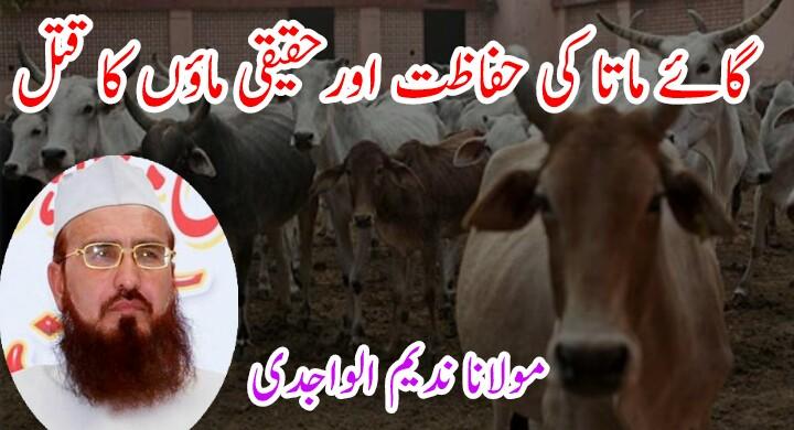 گائے ماتا کی حفاظت اورحقیقی ماؤں کا قتل