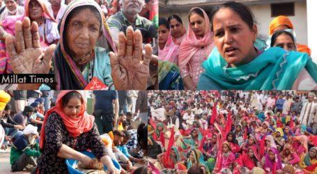 کسان تحریک: حقوق کی جنگ میں اتریں تمام بہنوں کو میرا سلام: راہل گاندھی