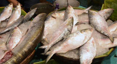 بھوپال میں مچھلی کے کاروبار پر پابندی، حکم عدولی پر ایک سال کی سزا!