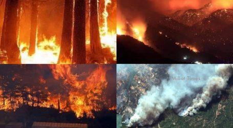جنوبی ترکی کے جنگلات میں زبردست آتشزدگی، کنٹرول کرنے کی ہنگامی طور پر کوششیں جاری