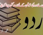 اہل زبان نے اردو کی تدفین کے لئے اسے کفن پہنا کر تیار کردیا ہے