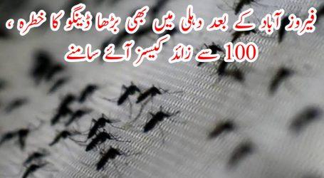 فیروز آباد کے بعد دہلی میں بھی بڑھا ڈینگو کا خطرہ ، 100 سے زائد کیسز آئے سامنے
