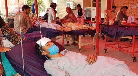 ڈینگو بخار سے فیروز آباد میں اب تک 55 لوگ جاں بحق، حالات فکر انگیز