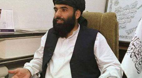 افغانستان: سہیل شاہین اقوام متحدہ میں طالبان حکومت کے سفیر نامزد